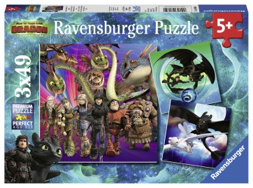 HTTYD How to Train your Dragon Puzzle