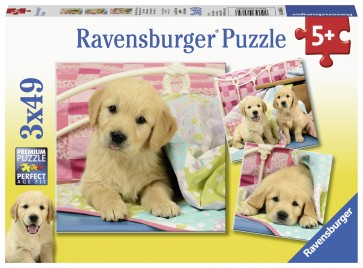 Cute Puppy Dogs Puzzle