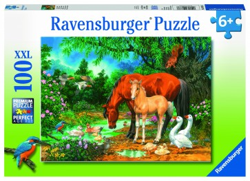 Ponies at the Pond Puzzle