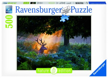 Rburg - Magical Light Puzzle 500pc