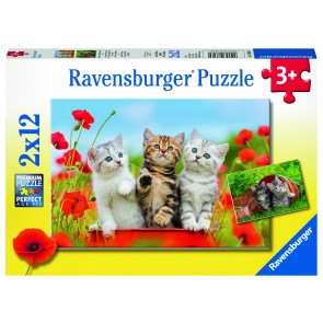 Kitten Adventures Puzzle