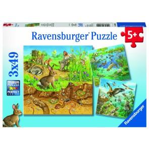 Animals in their Habitats Puzzle