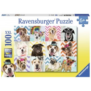 Doggy Disguise Puzzle