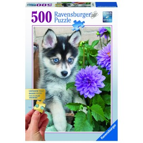 Rburg - Cute Husky Puzzle 500pc