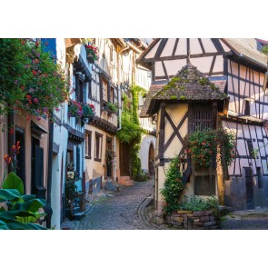 French Moments in Alsace Puzzle