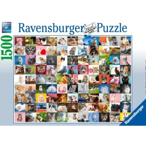 99 Cats Puzzle