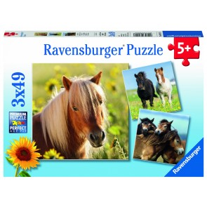 Rburg - Loving Horses Puzzle 3x49pc