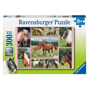 Rburg - Horse Heaven Puzzle 300pc