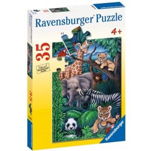 Rburg - Animal Kingdom Puzzle 35pc