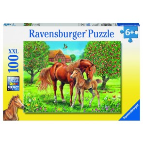 Rburg - Horses in the Field 100pc Puzzle