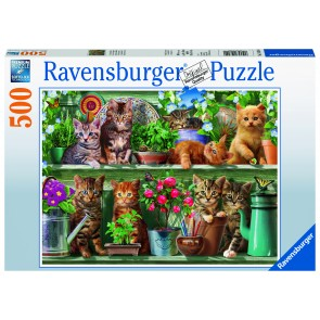 Cats on the Shelf Puzzle
