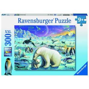 Rburg - Meet the Polar Animals 300pc Puzzle