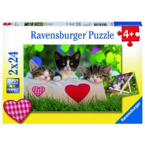 Rburg - Sleepy Kittens Puzzle 2x24pc