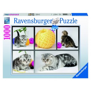 Rburg - A Yarn About Cats Puzzle 1000pc