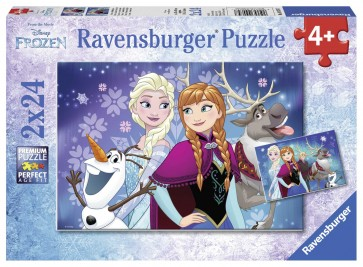 Disney Northern Lights Puzzle