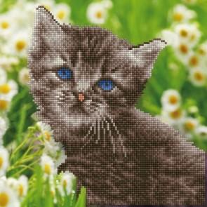 Diamond Dotz Diamond Art -  Kitten Kit