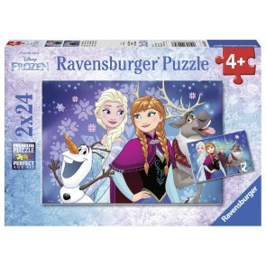 Disney Northern Lights Puzzle