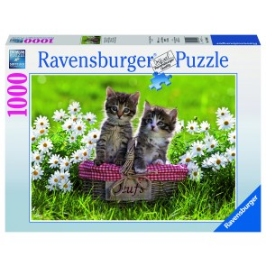 Rburg - Picnic in the Meadow Puzzle 1000pc
